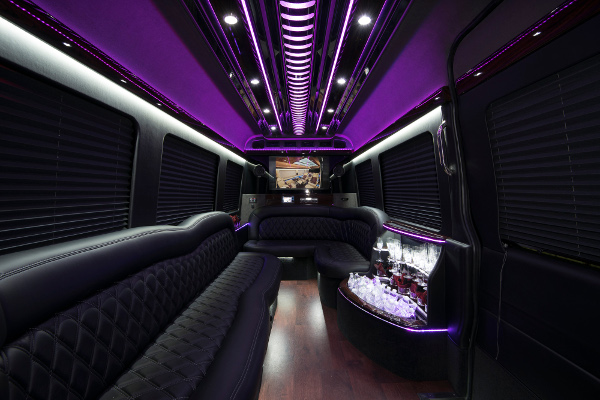 12 passenger sprinter in Austin Interior